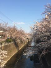 春うらら☆